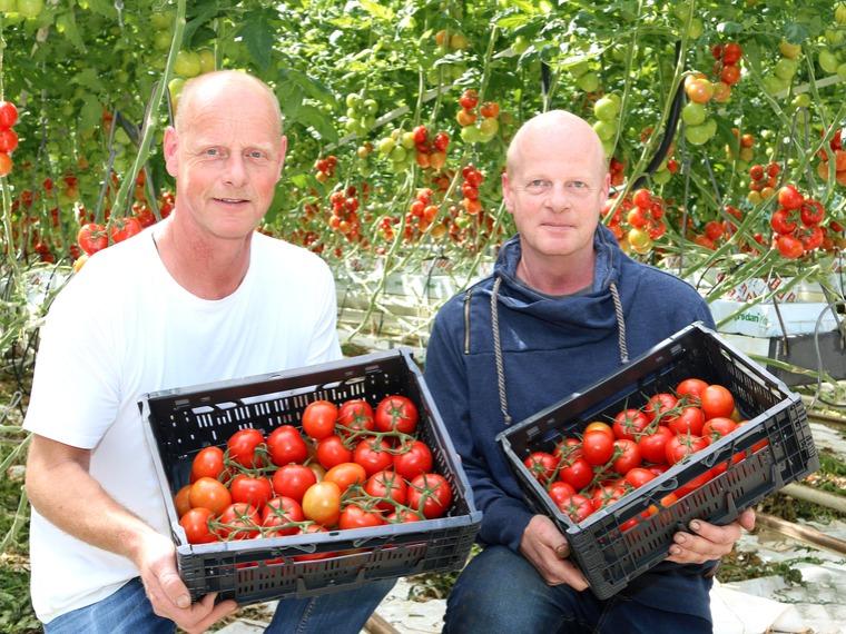 Jaap en Piet Ammerlaan