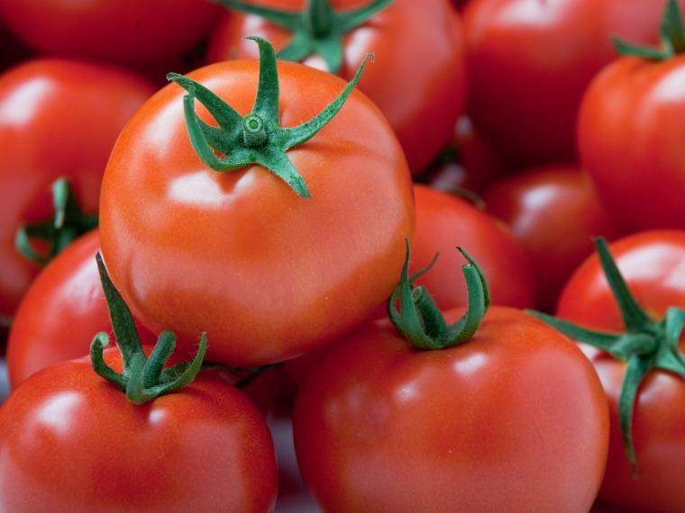 Runde Tomaten
